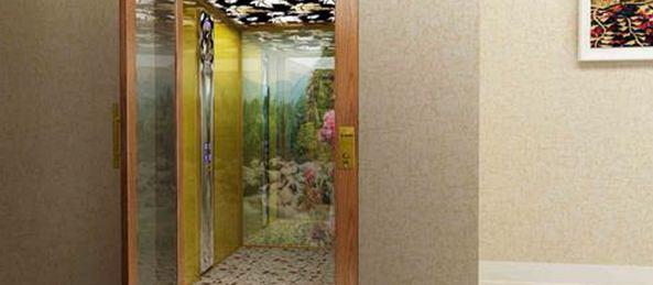 漂亮的私人家用别墅电梯